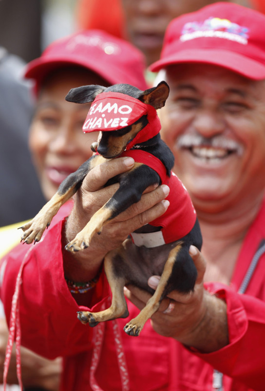 A supporter of Venezuela's acting President Maduro holds a dog outside the national election board in Caracas
