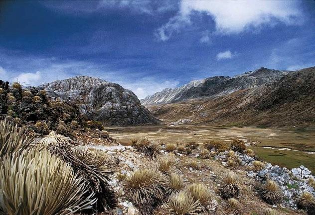 valle-de-mifafi-paramo-de-p-leogarcia