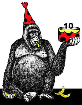 gorila, rayma, 3 de febrero 2009