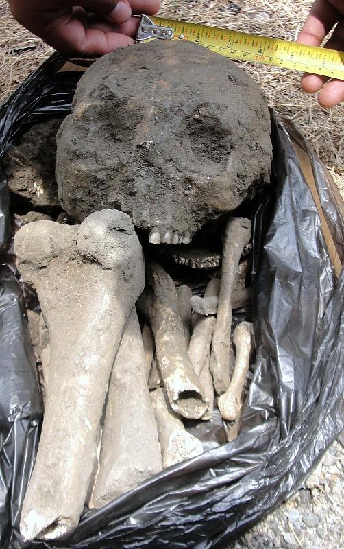 F1- Detalle de los restos óseos hallado