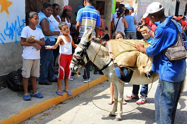 San-Juan-de-Curiepe_13_06_2015_-FOTOS-_LUIS-LAYA-24