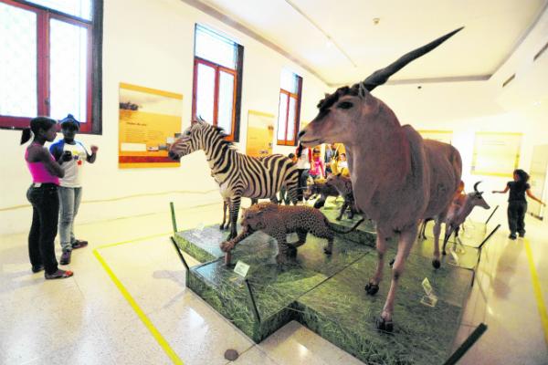 Museo-de-Ciencia102