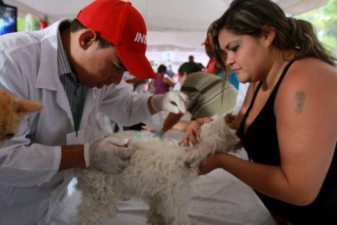 mision_nevado_vacuna
