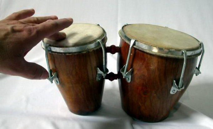 bongos4